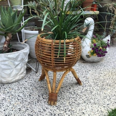 Mid Century Cane Jungalow Plant holder